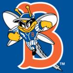 Minor League Baseball Name Changes Binghamton Mets